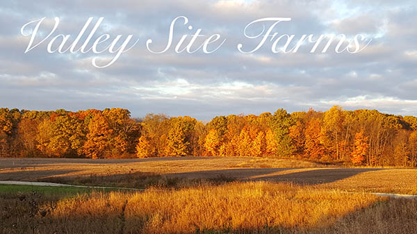 Valley Site Farms